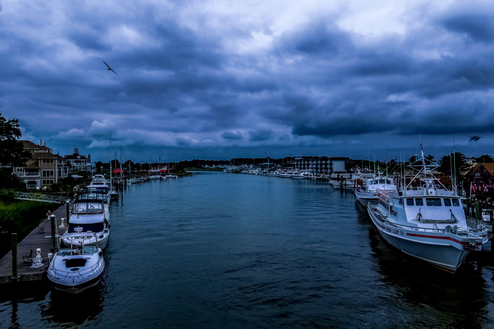 Overcast Day by Advenini