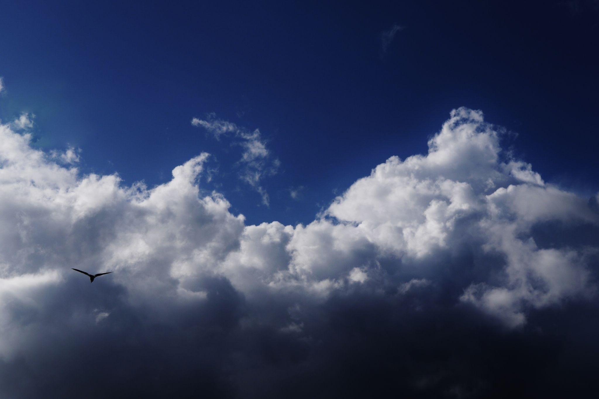 Sky by David Brand