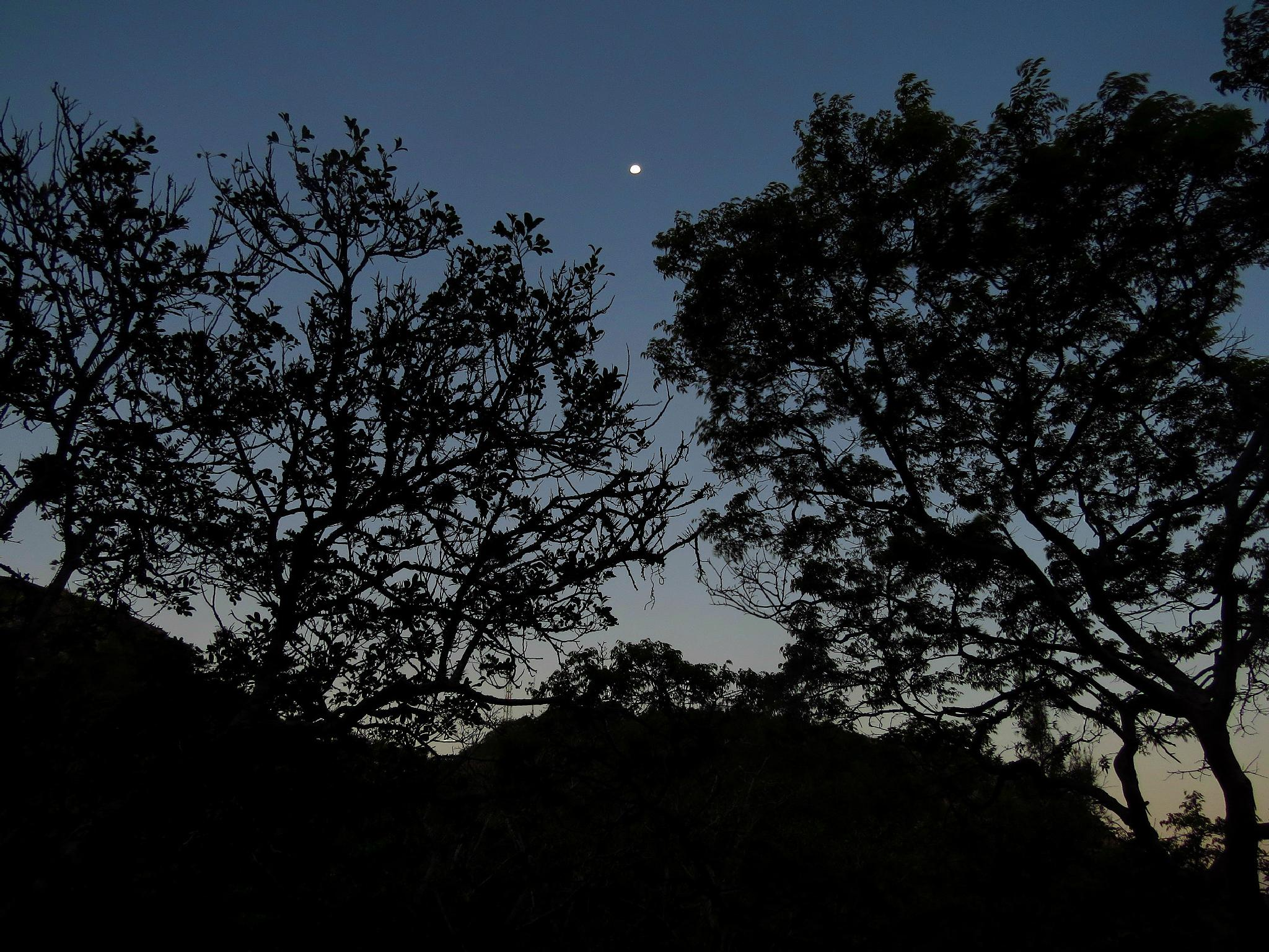 good night  by Lucas Silveira