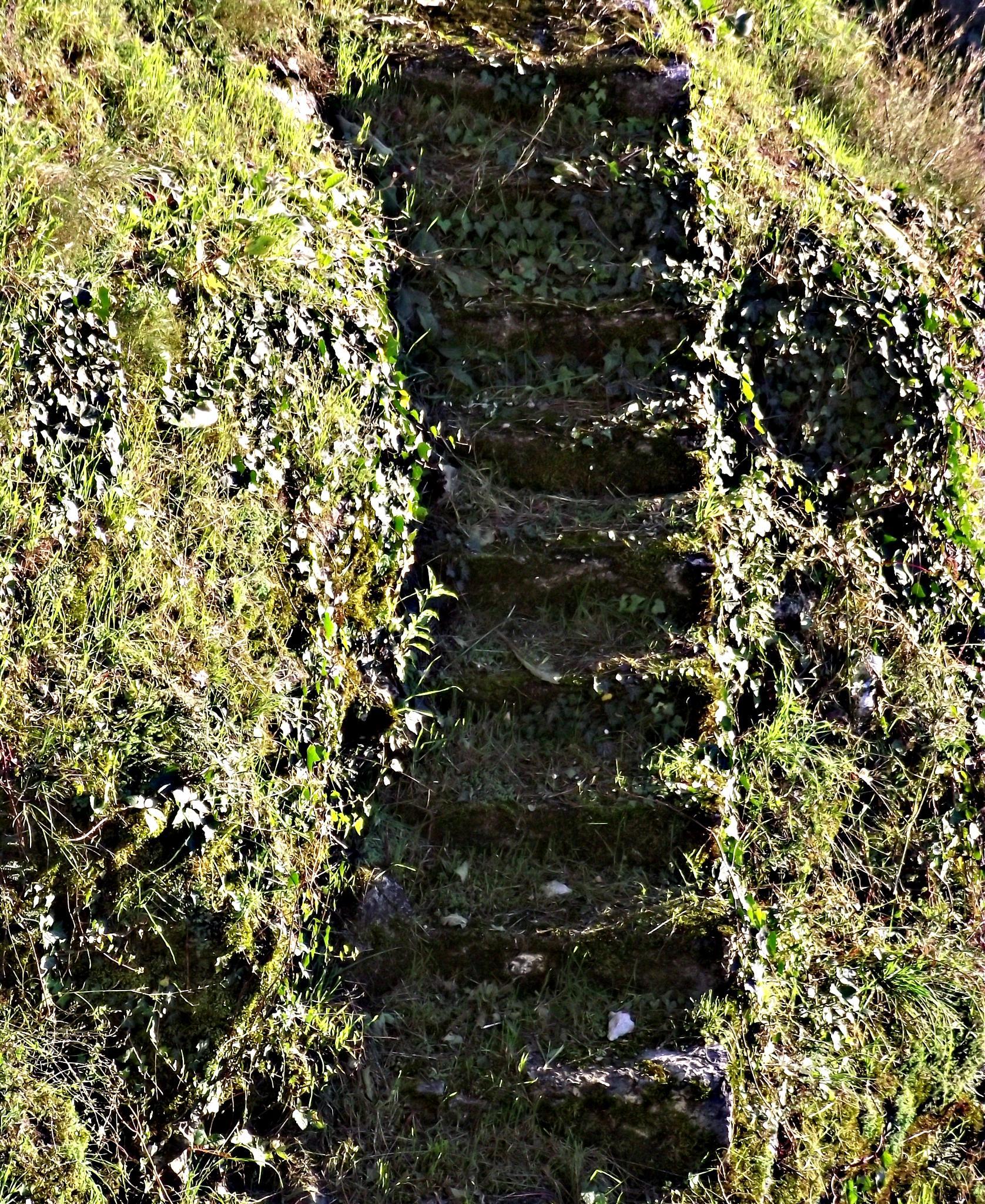 stairs to.... by Faruk Memic