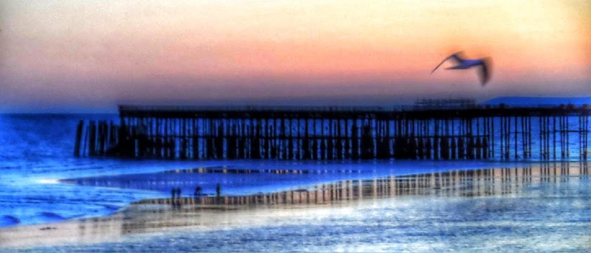 Hastings Pier by Jonathan Wood