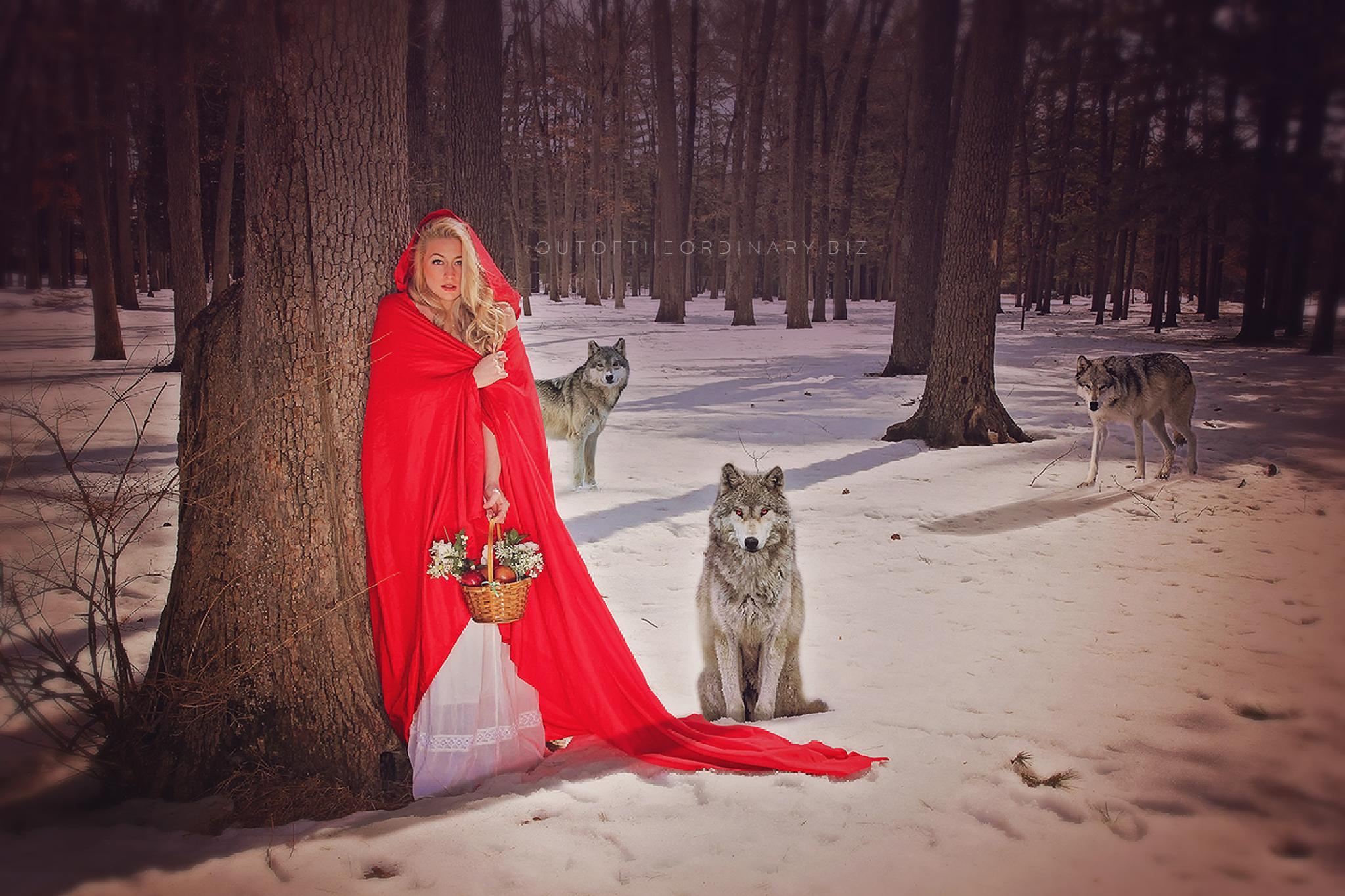 Little Red Riding Hood by Holly Schreckengost Greene