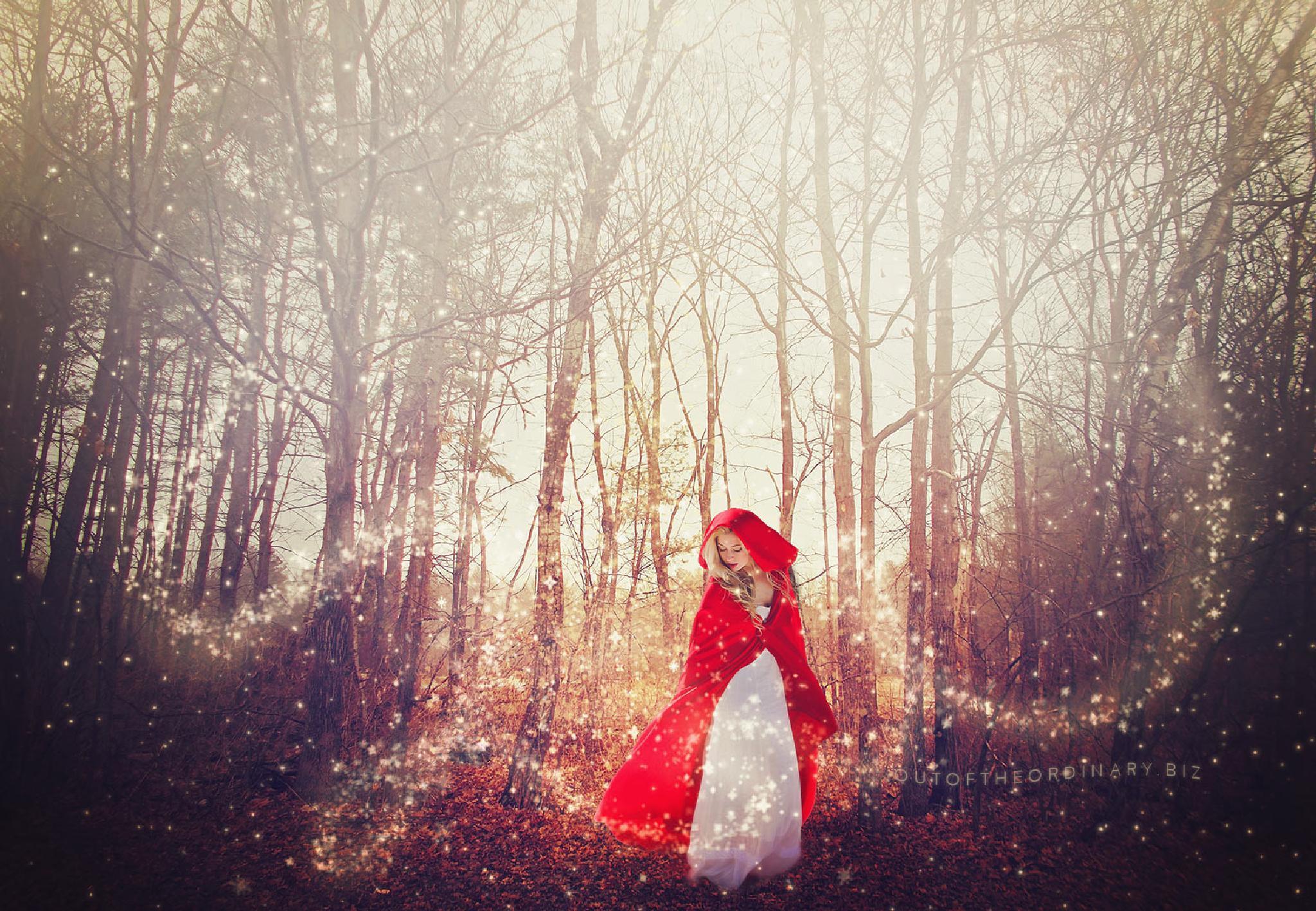 Mystical Forest by Holly Schreckengost Greene