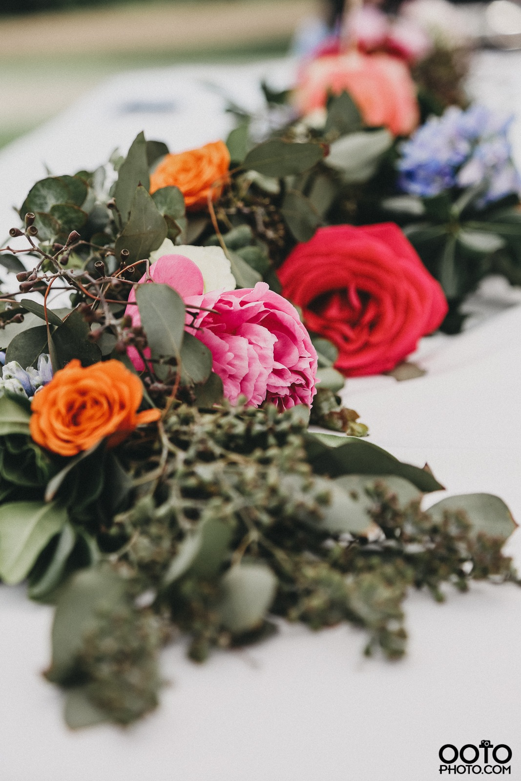 Flowers' Flowers by Holly Schreckengost Greene