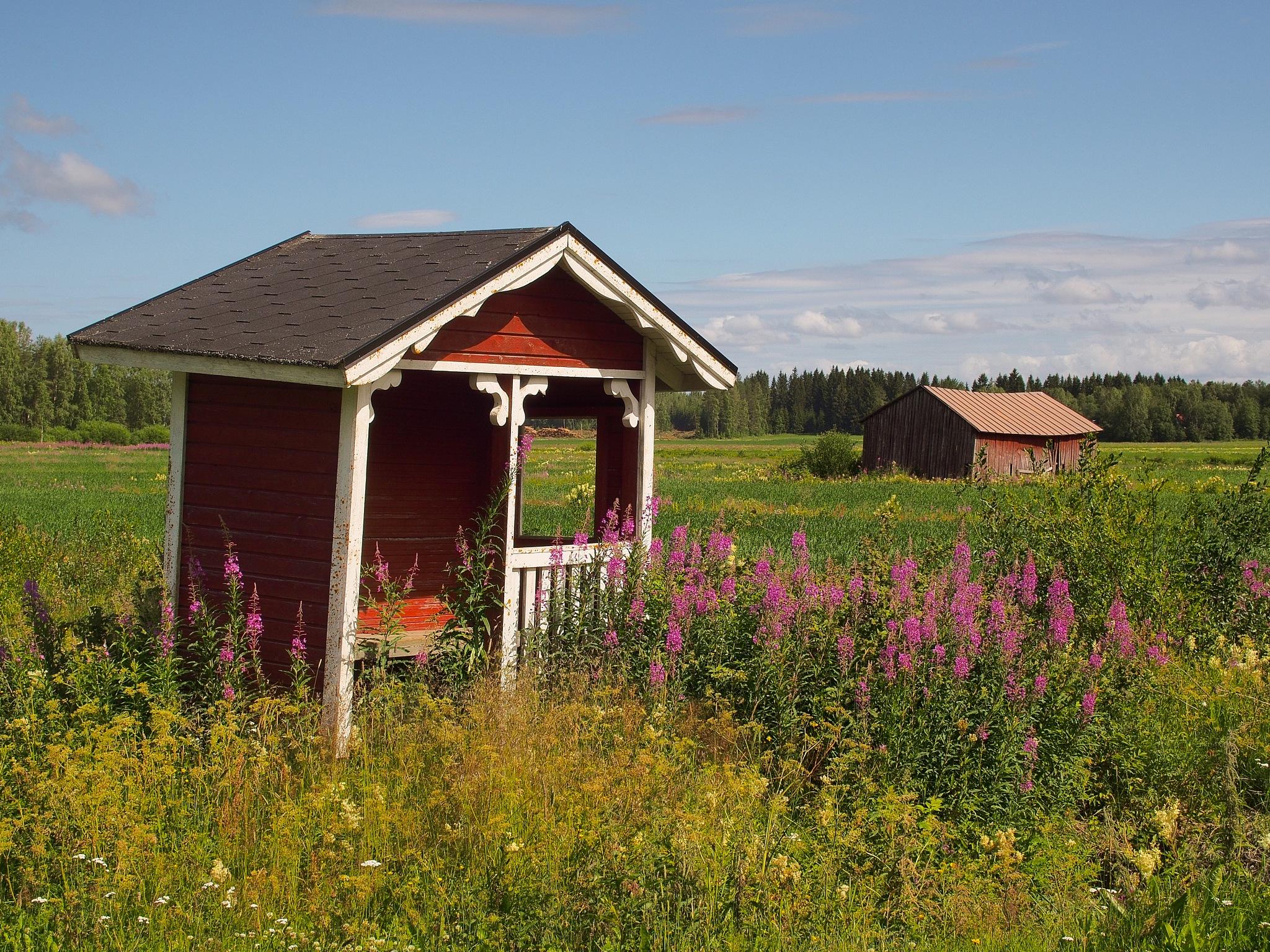 Kortjärvi-bus-stop in summertime. (no school) by Petri Mustonen