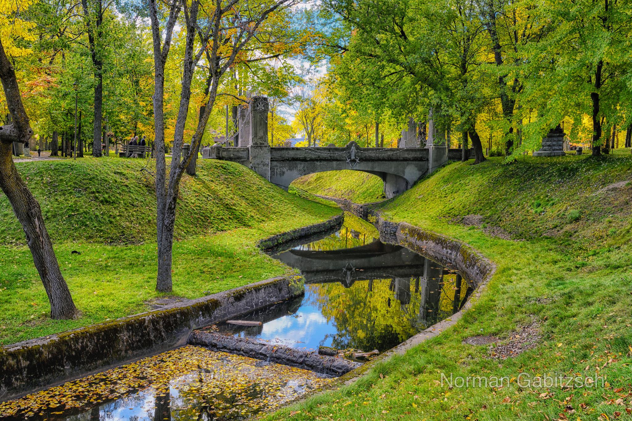 Photo in Travel #garden #trees #canada #water #autumn #norman gabitzsch #nikon #nikon d850 #nature #serene #photography #naturephotography #travel #outdoors #grass #travel photography #no people #green