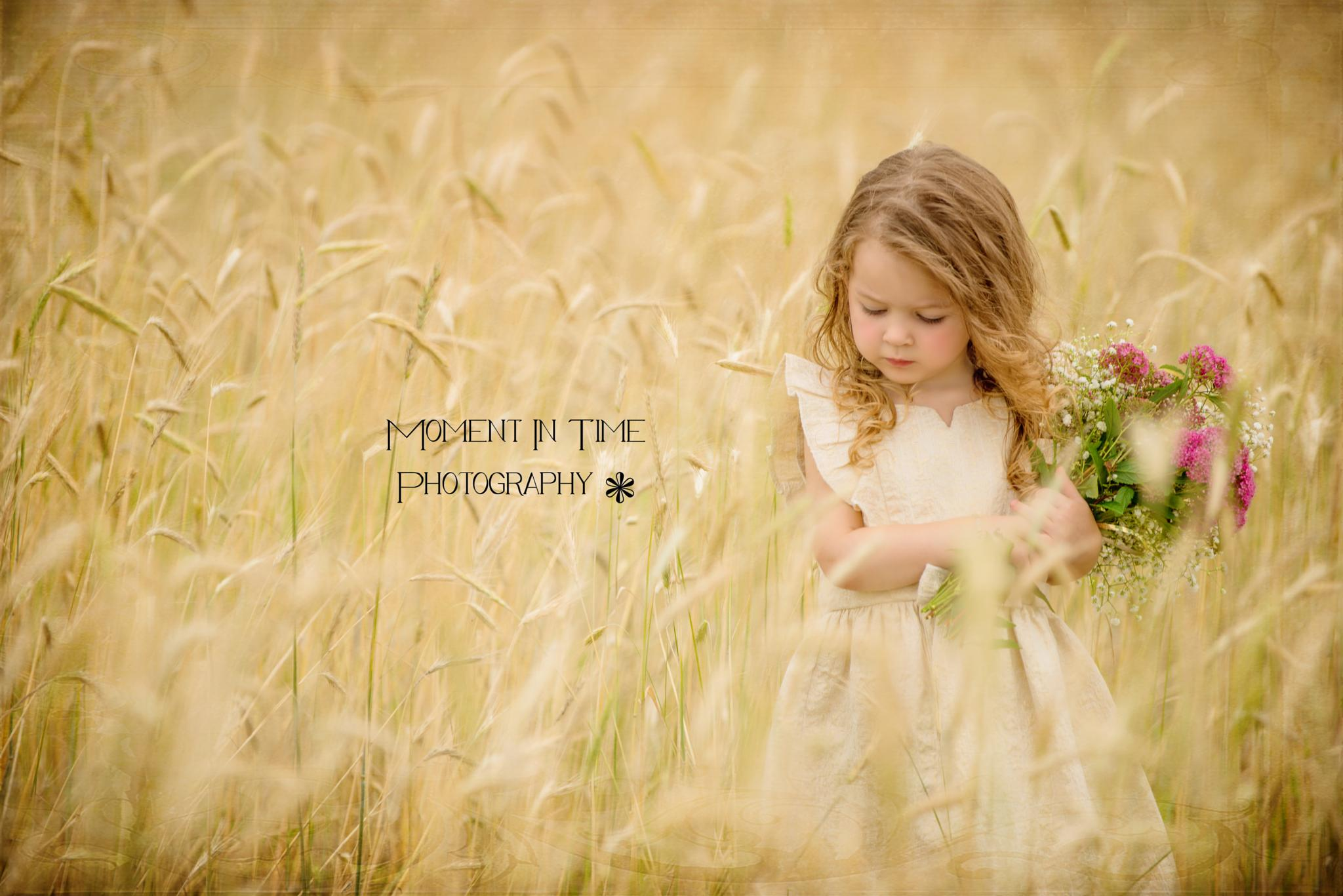 Before the Harvest by TerryLynn