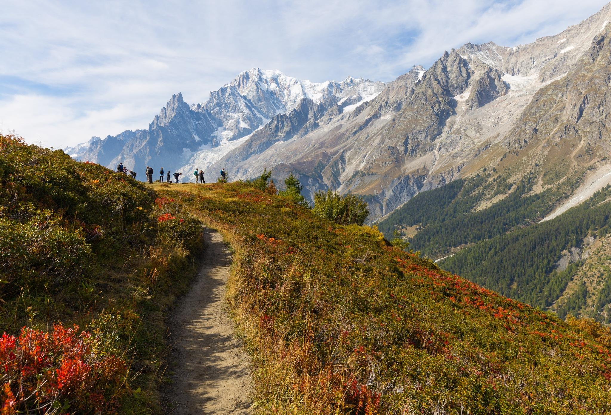 Alpine Rest Stop by Stormrider