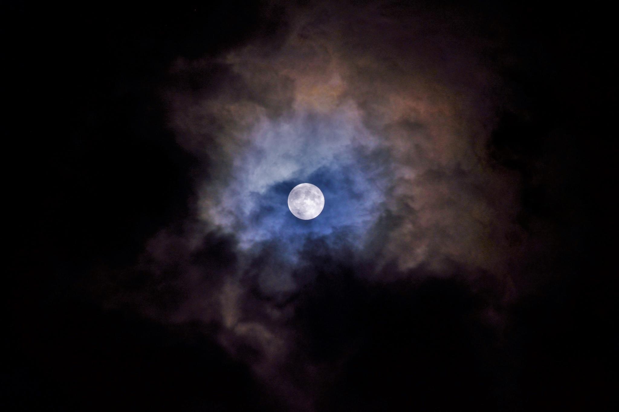 The Night by Pukshansky Gregory