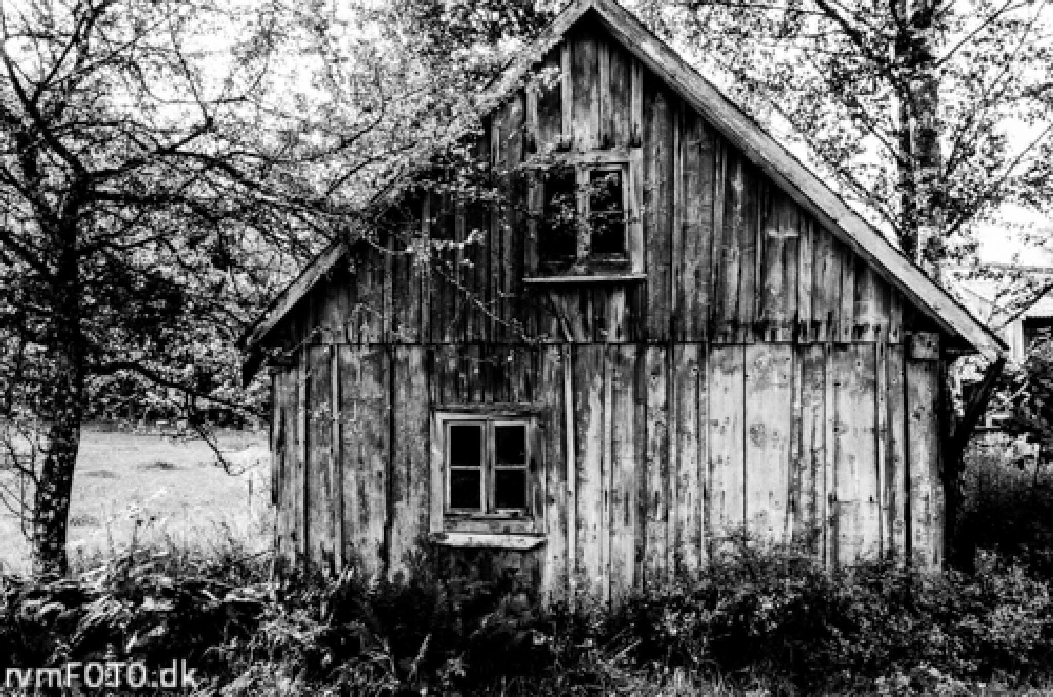 Wood house by rvmFOTO