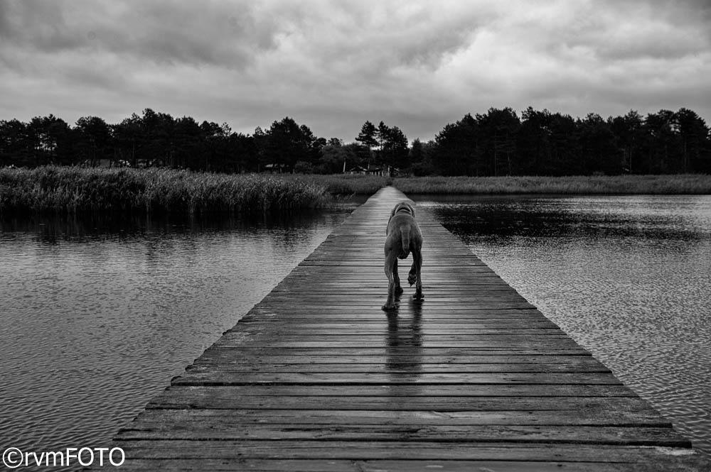 lonely walk by rvmFOTO