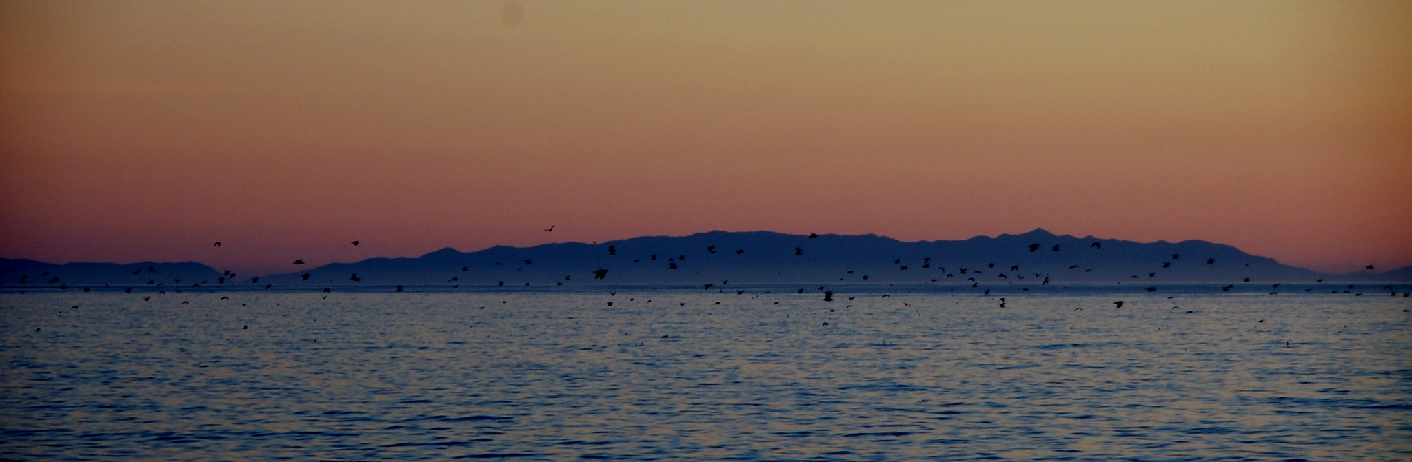 Catalina Island at Dusk by CaliforniaPeggy
