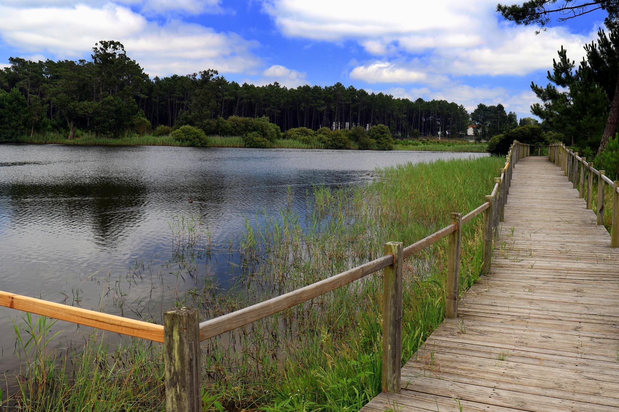 Lagoon by GilReis
