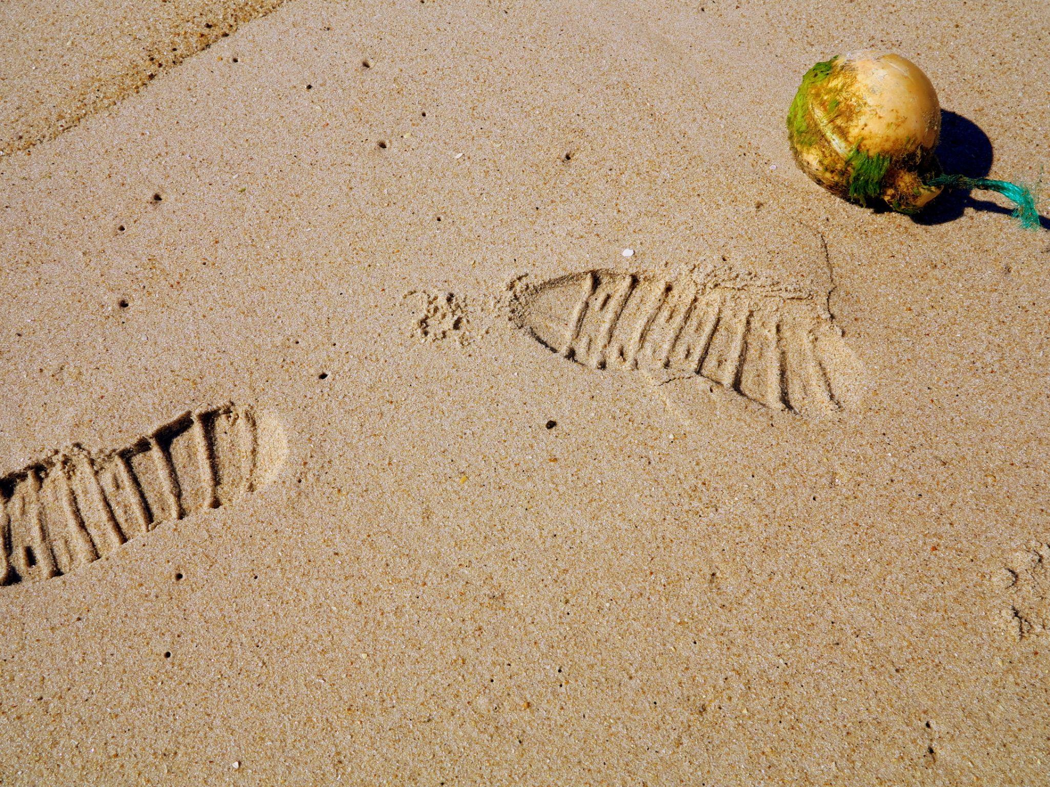 Sand by GilReis