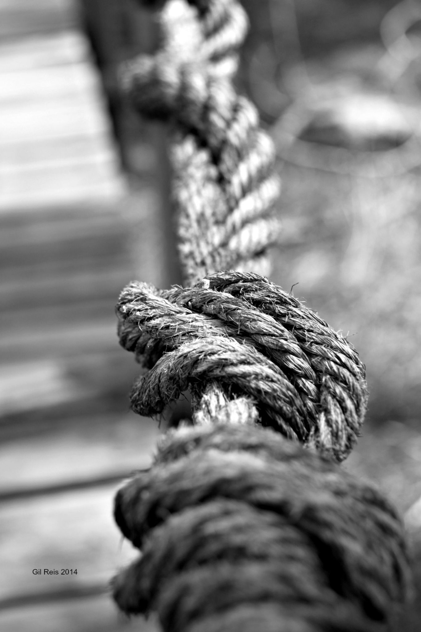 Ropes by GilReis