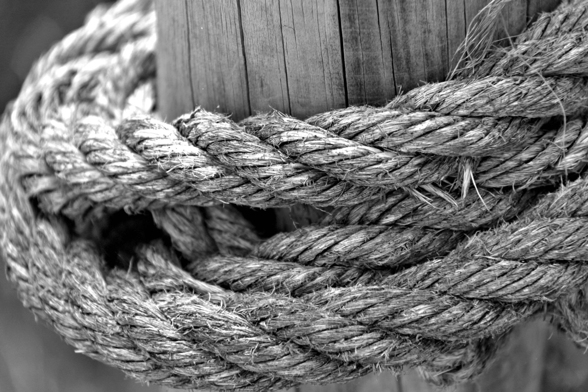 Ropes II by GilReis