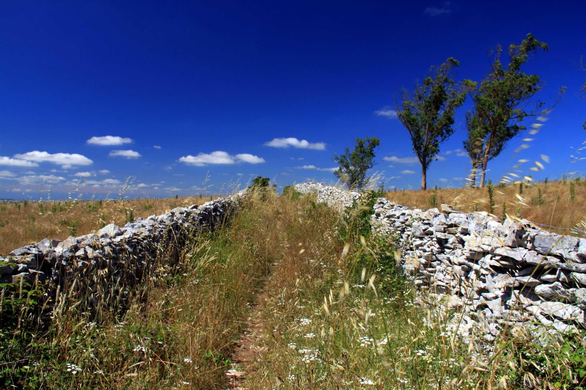 Path between stones by GilReis