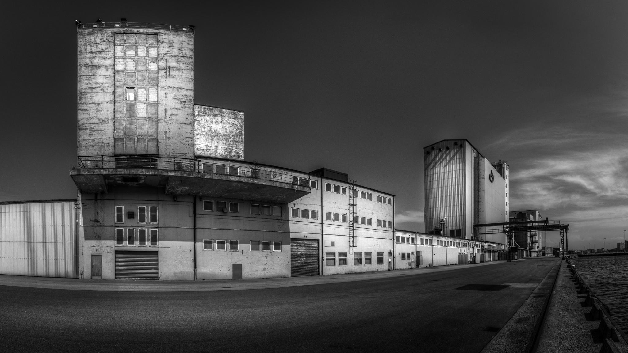 Grain silos by Mirza Buljusmic