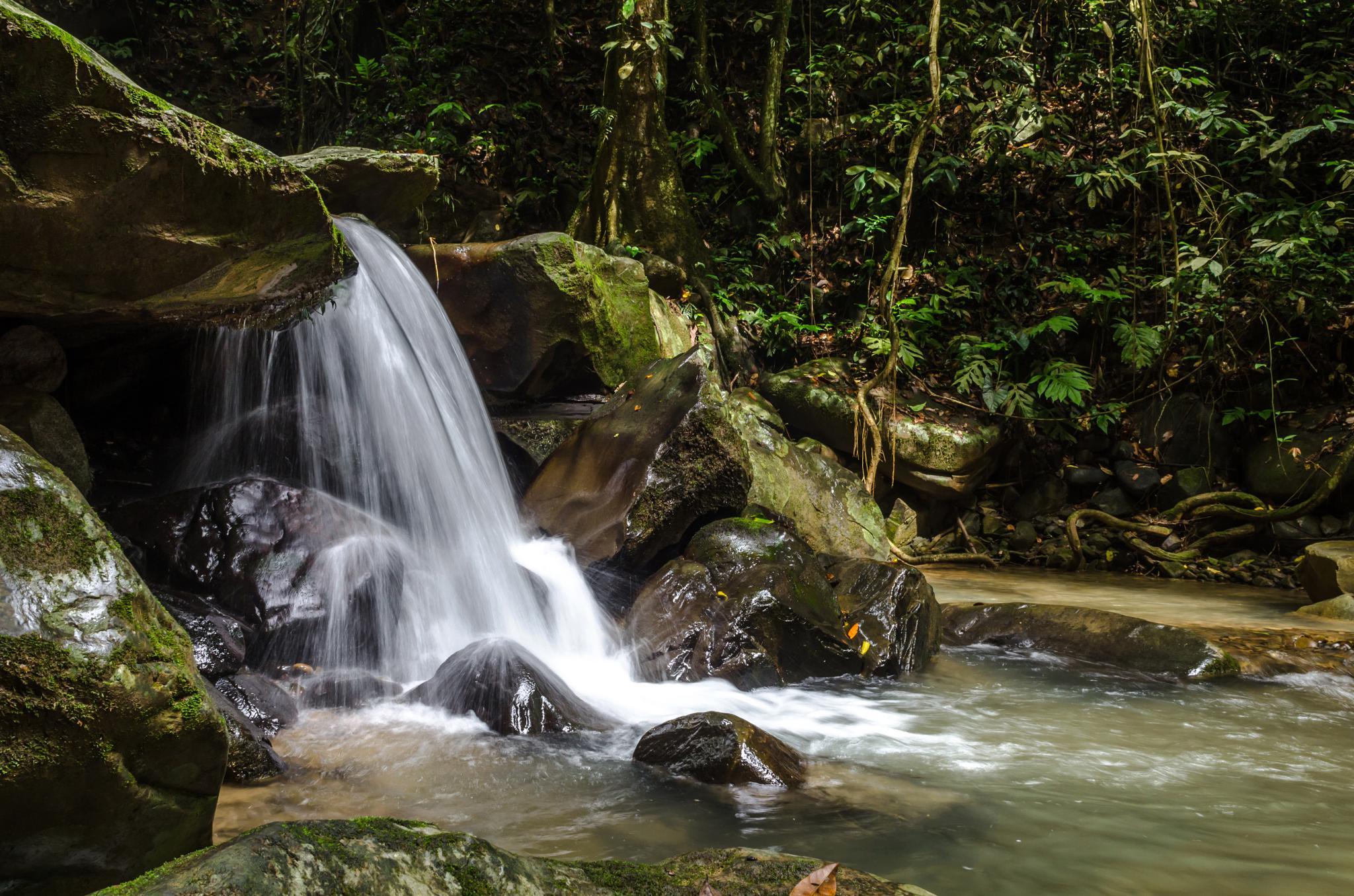 Waterfall by albert.lee.98892