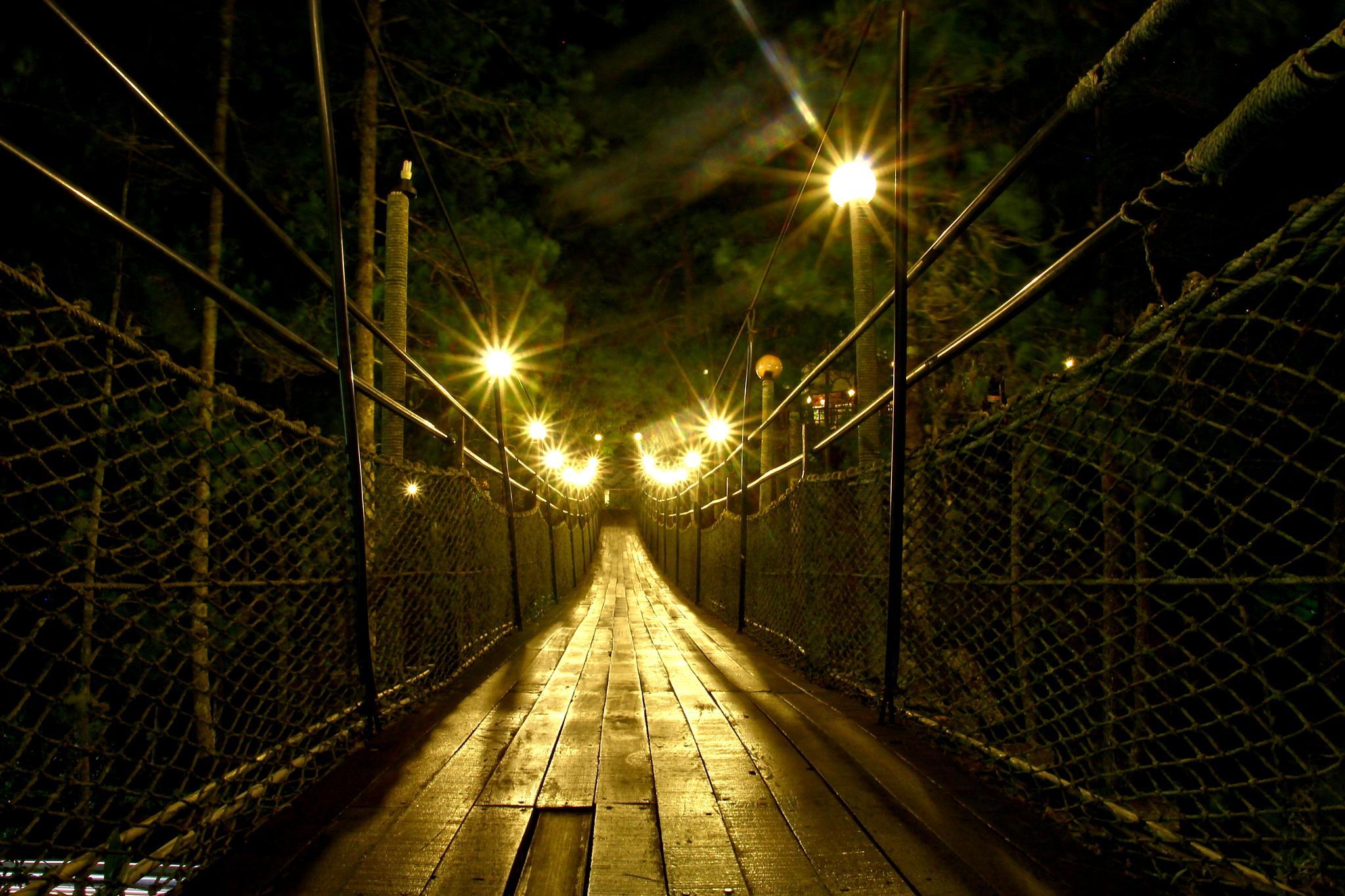 Rope Bridge by hongrong.zhou