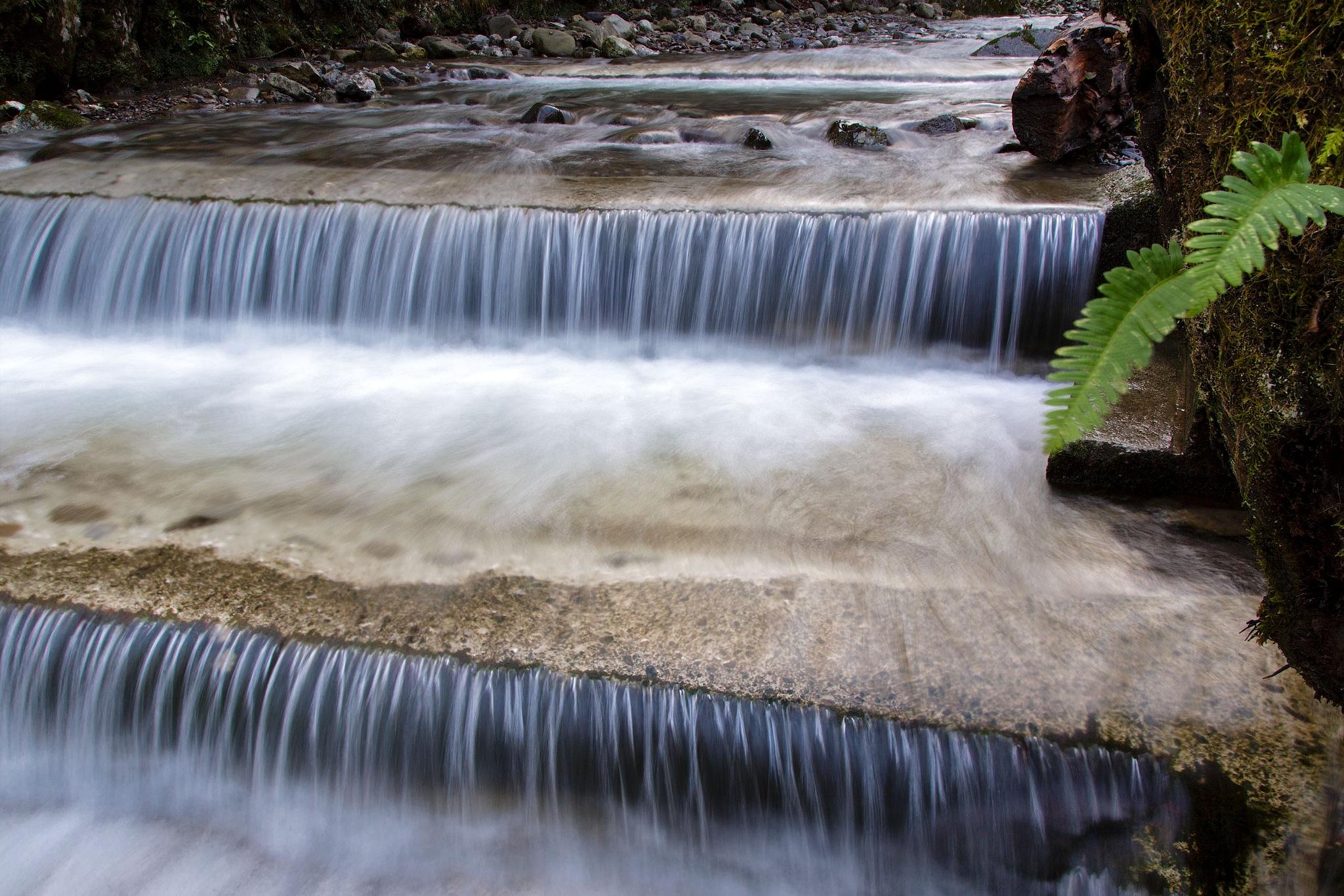 Creek Jasle by stanislav.horacek2