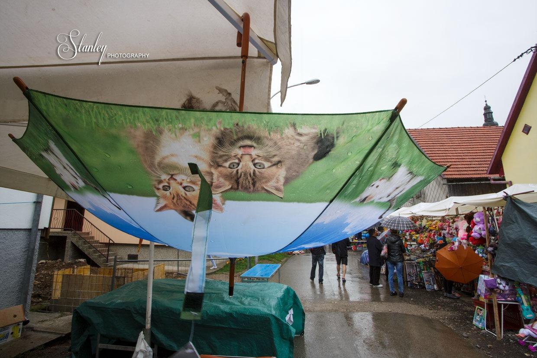 Umbrella by stanislav.horacek2