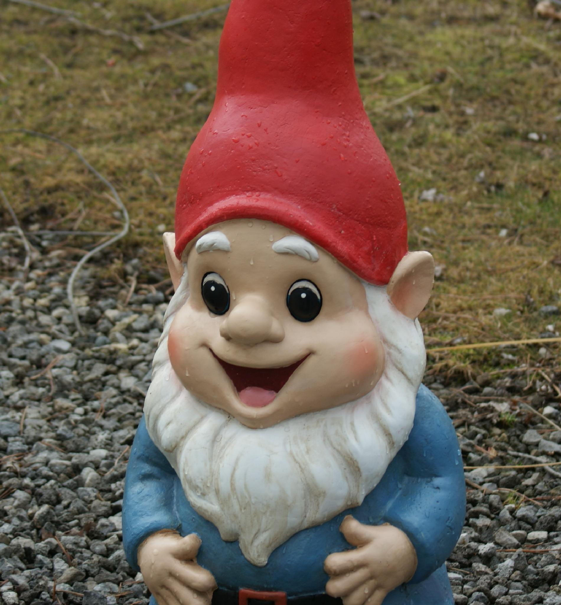 Gnome by Darlene Pavek