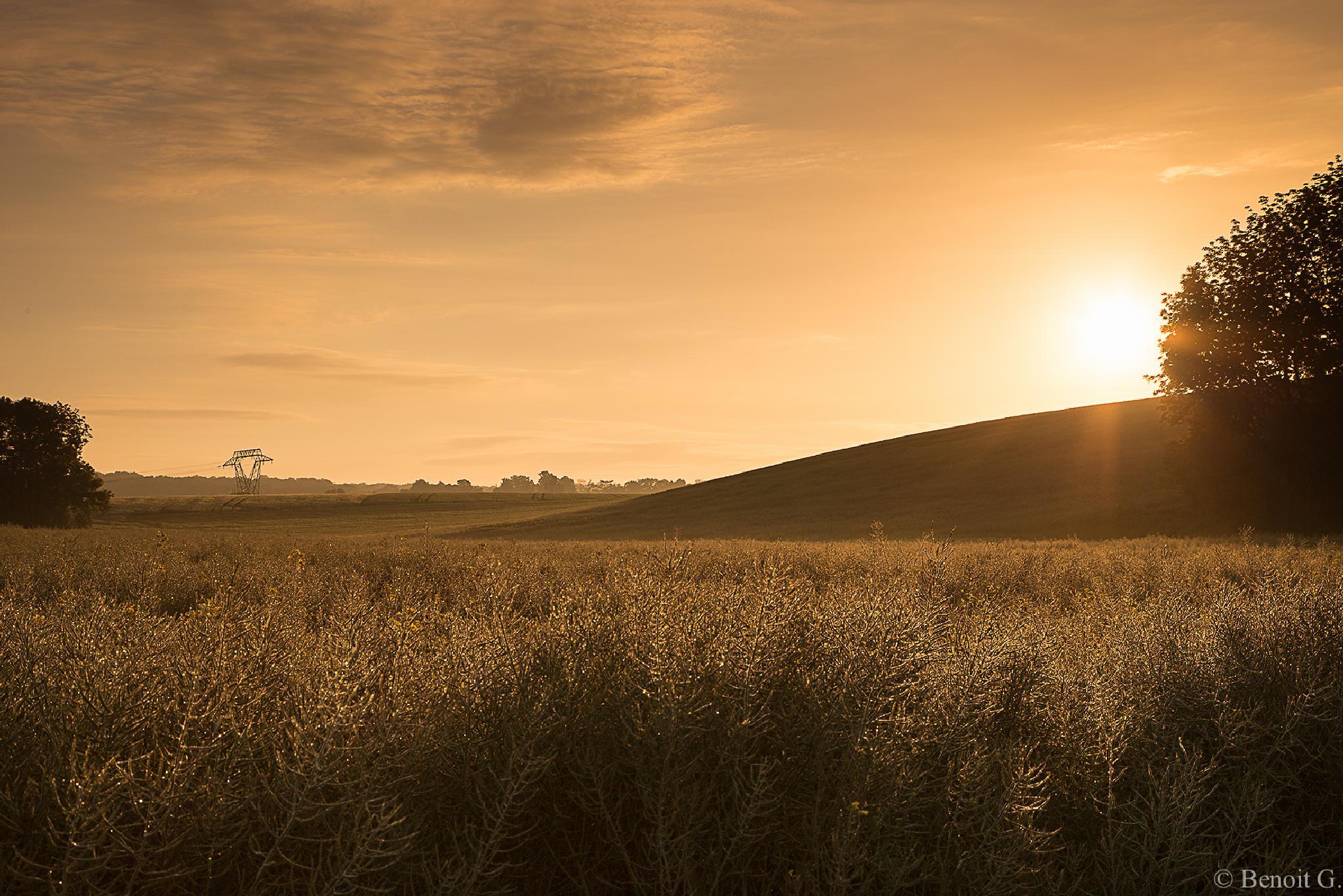 Rising sun on Versailles by BenoitG