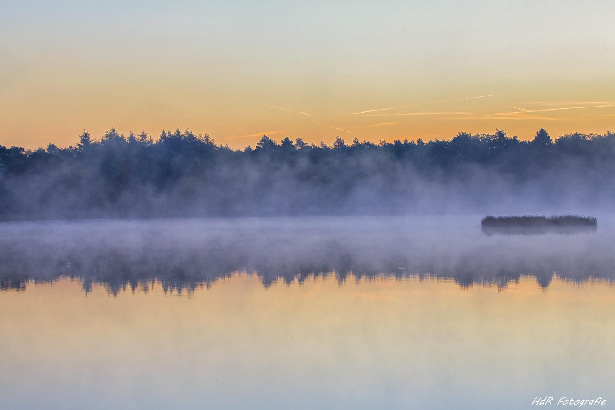 Foggy Morning by Herman de Raaf