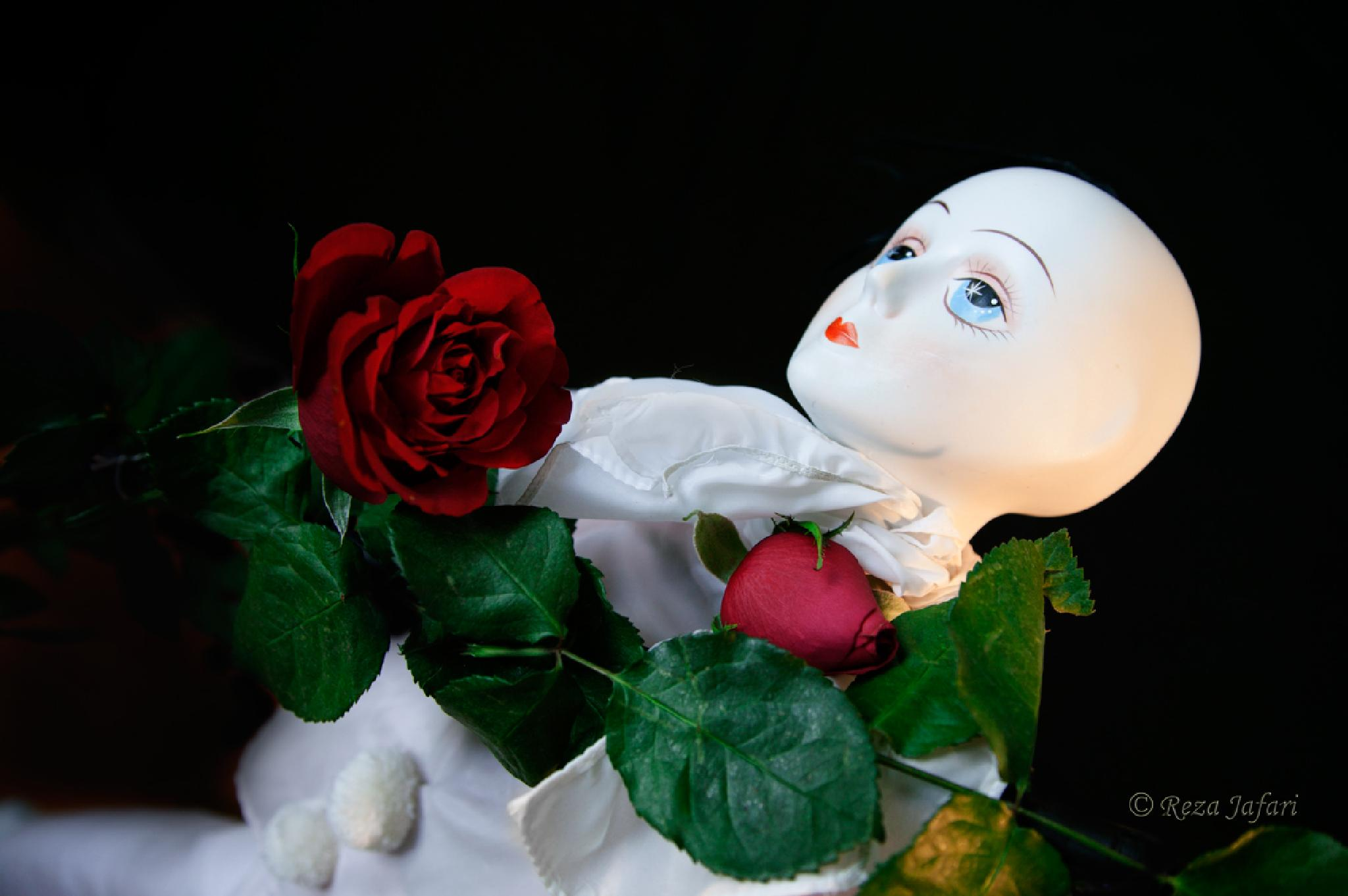 Doll with roses by ArianJafari