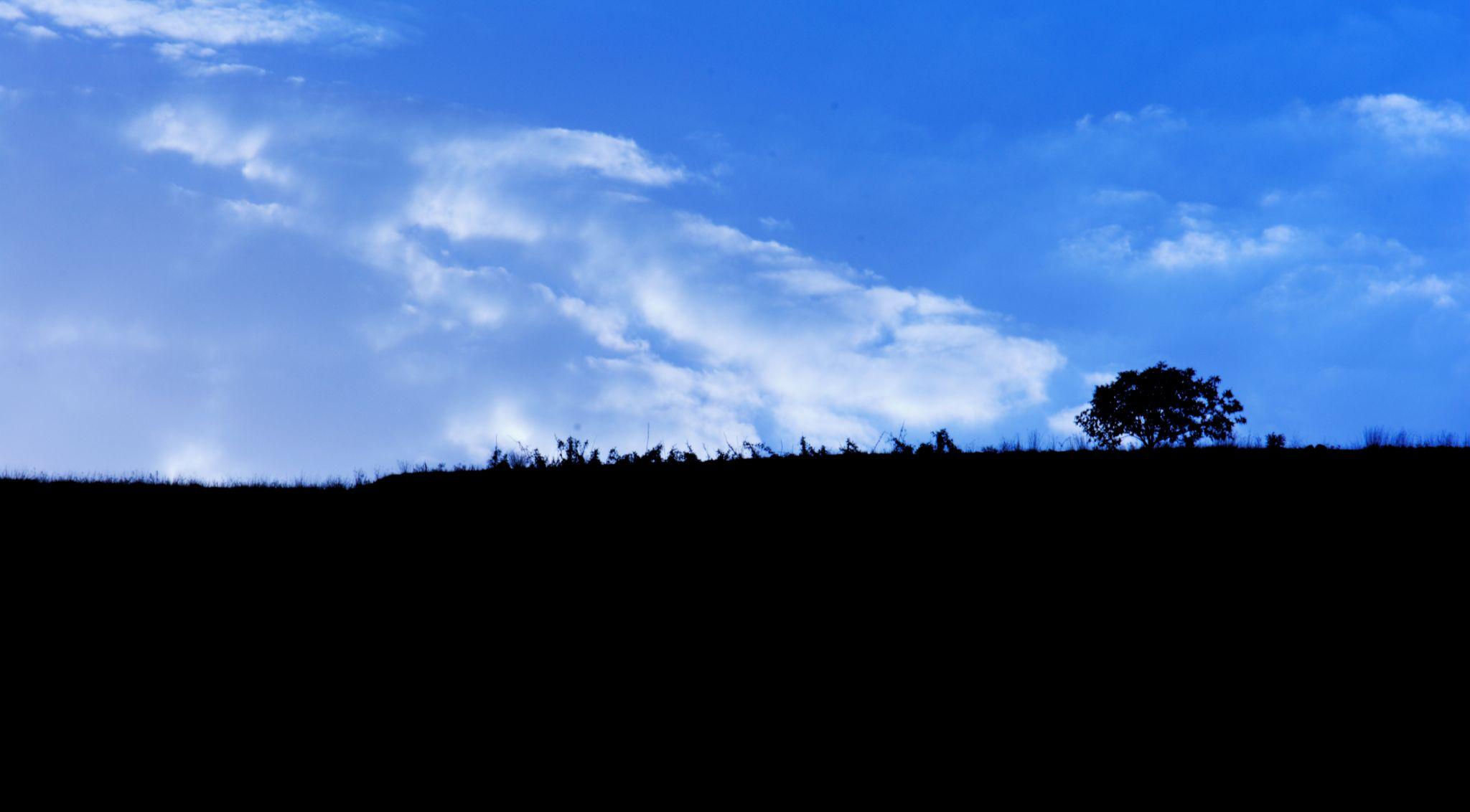 Simple Land by Poya Raissi