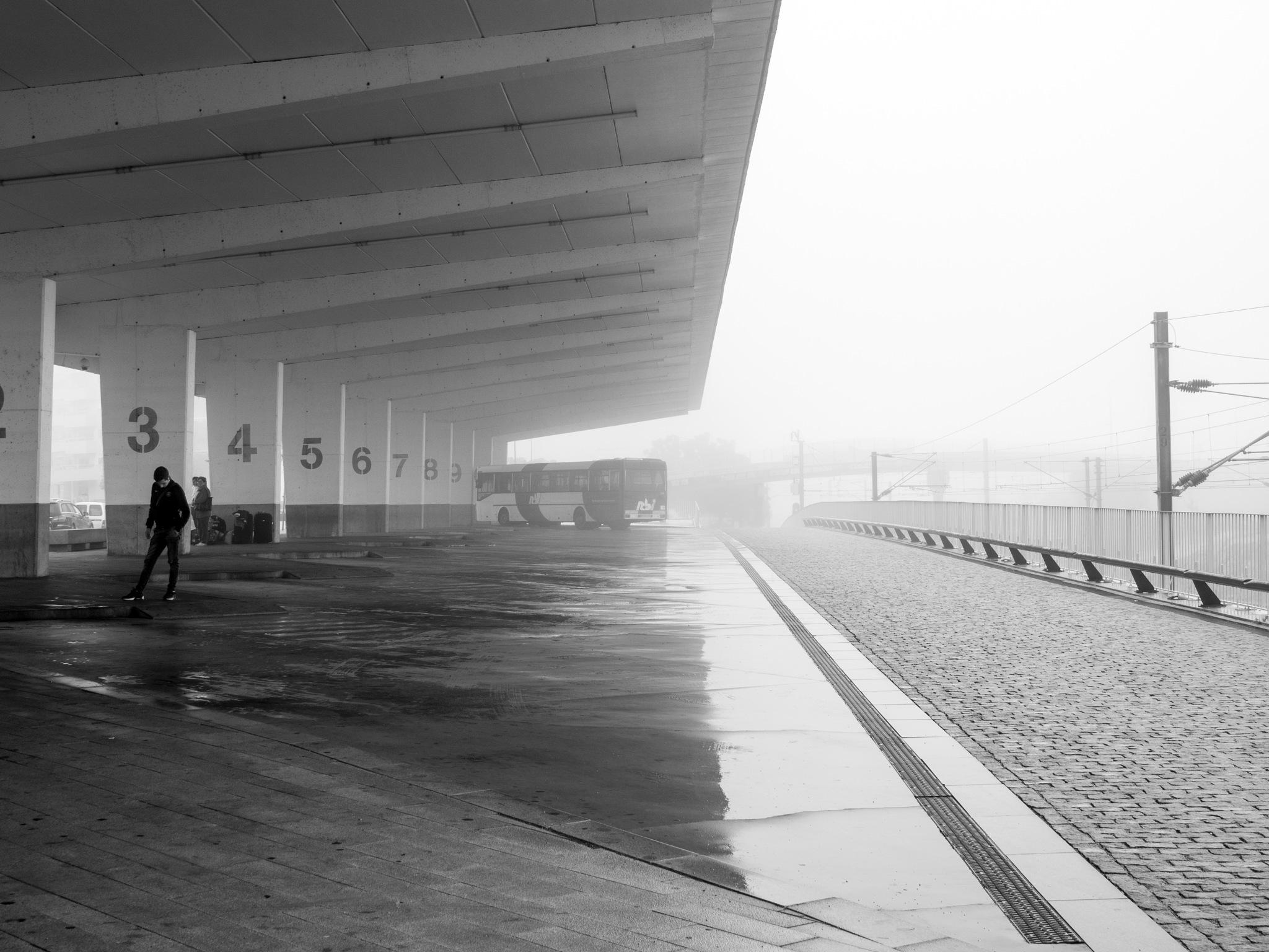Untitled by Carlos MG Reis