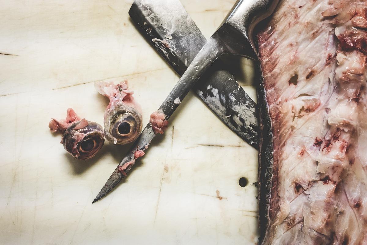 """""""Splatter fish"""" by marco.bucci.foto"""