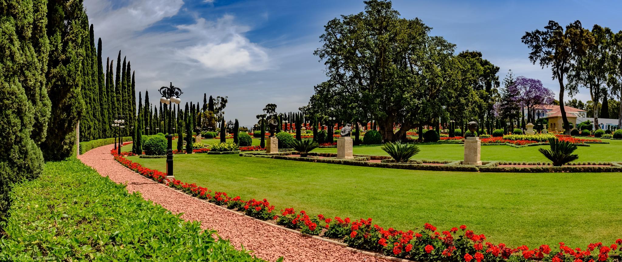Bahai garden by Mordy Beraha