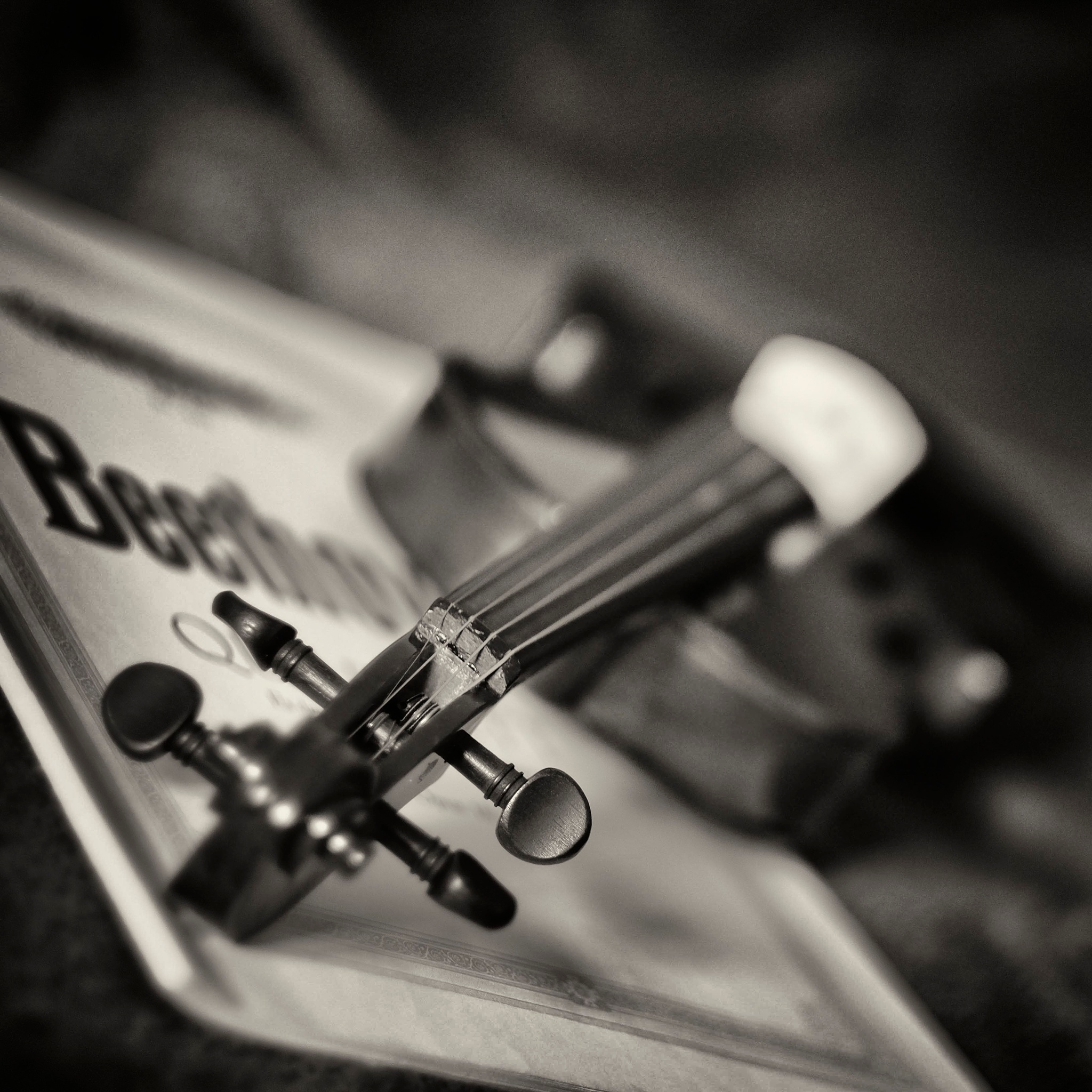 Violon..part.2 by photosdan