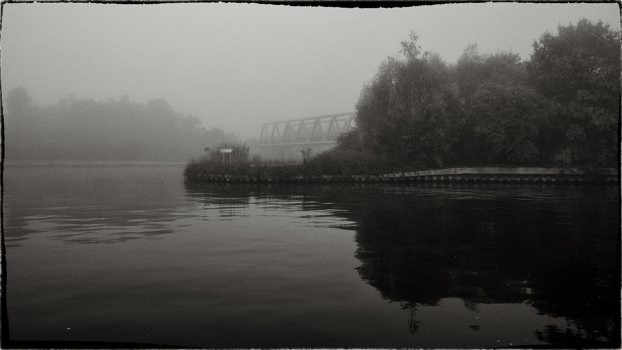 dans la brume matinale. by photosdan