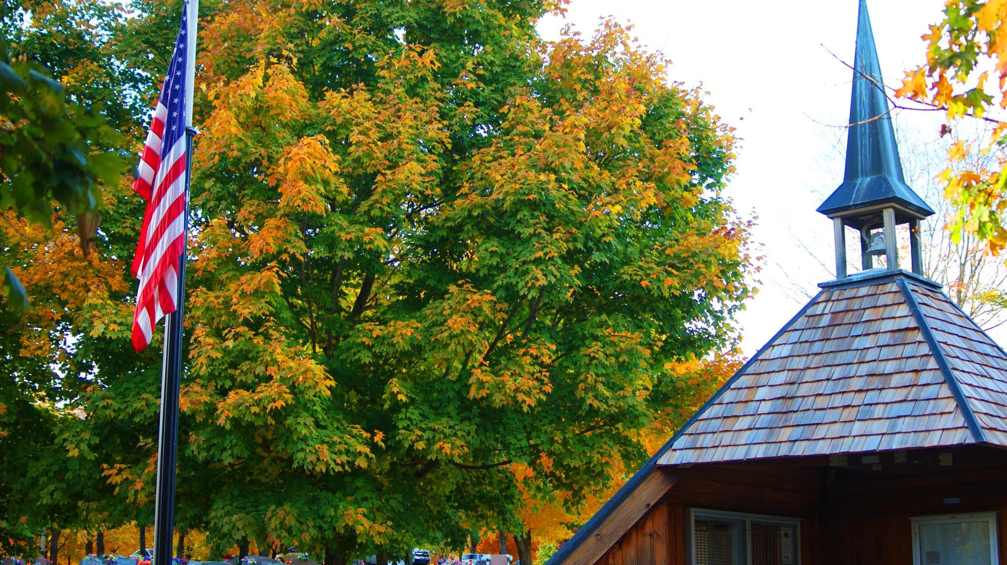 Photo in Landscape #flag #america #trees #fall #cemetery #dslr #camera #cam