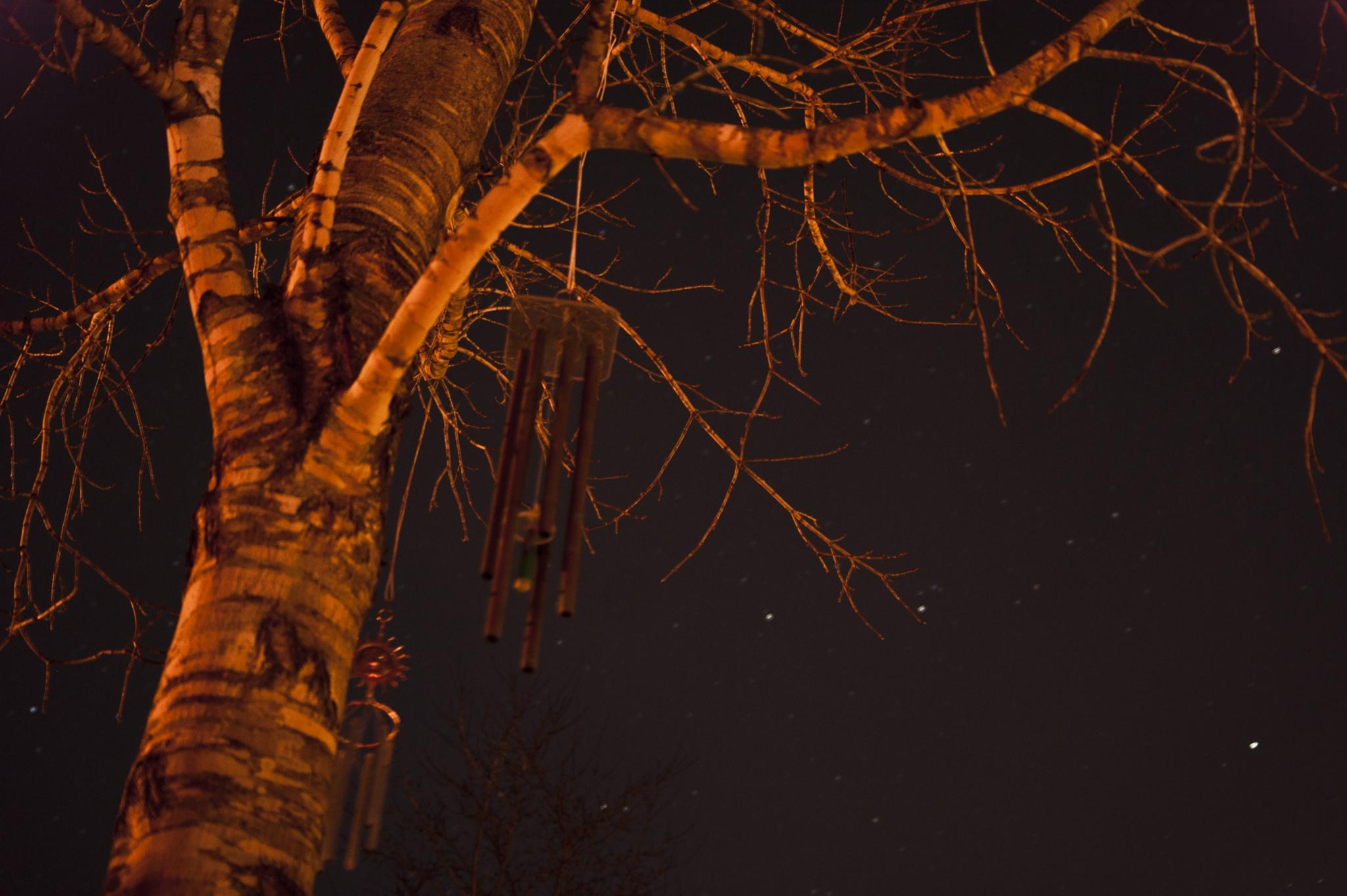 Wind chimes by Austin Devine