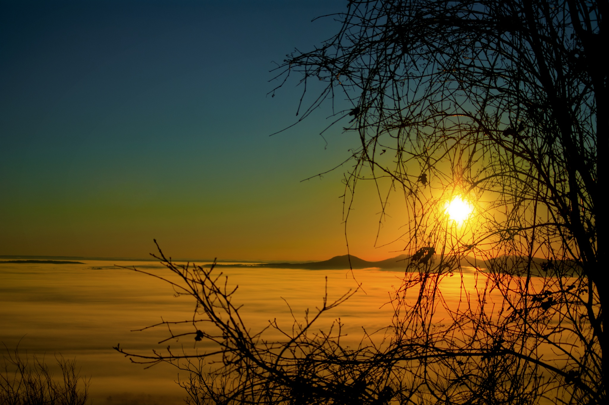 Foggy Sunrise by Austin Devine