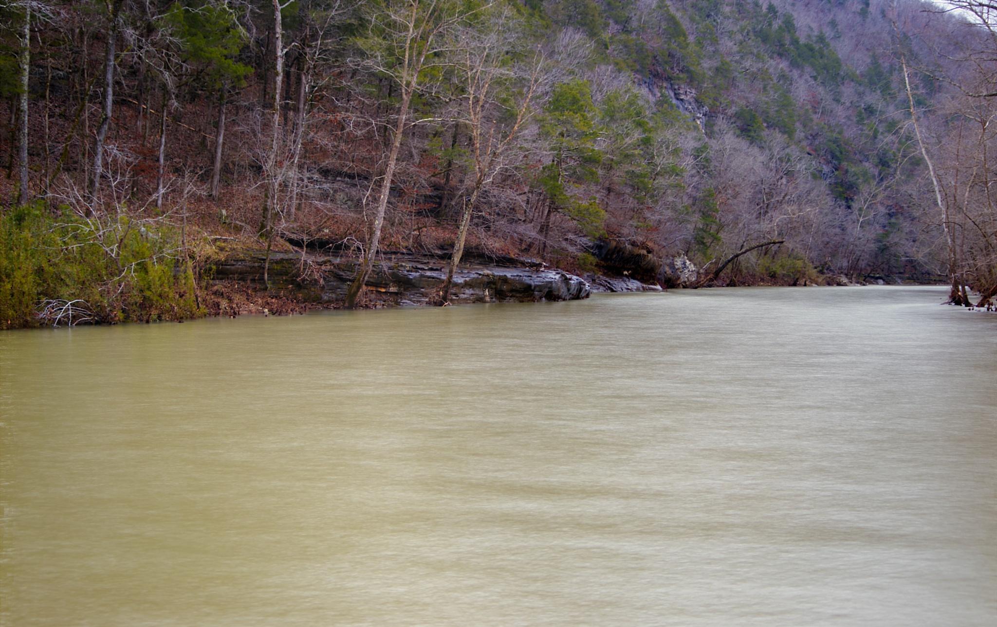 The Buffalo River by Austin Devine