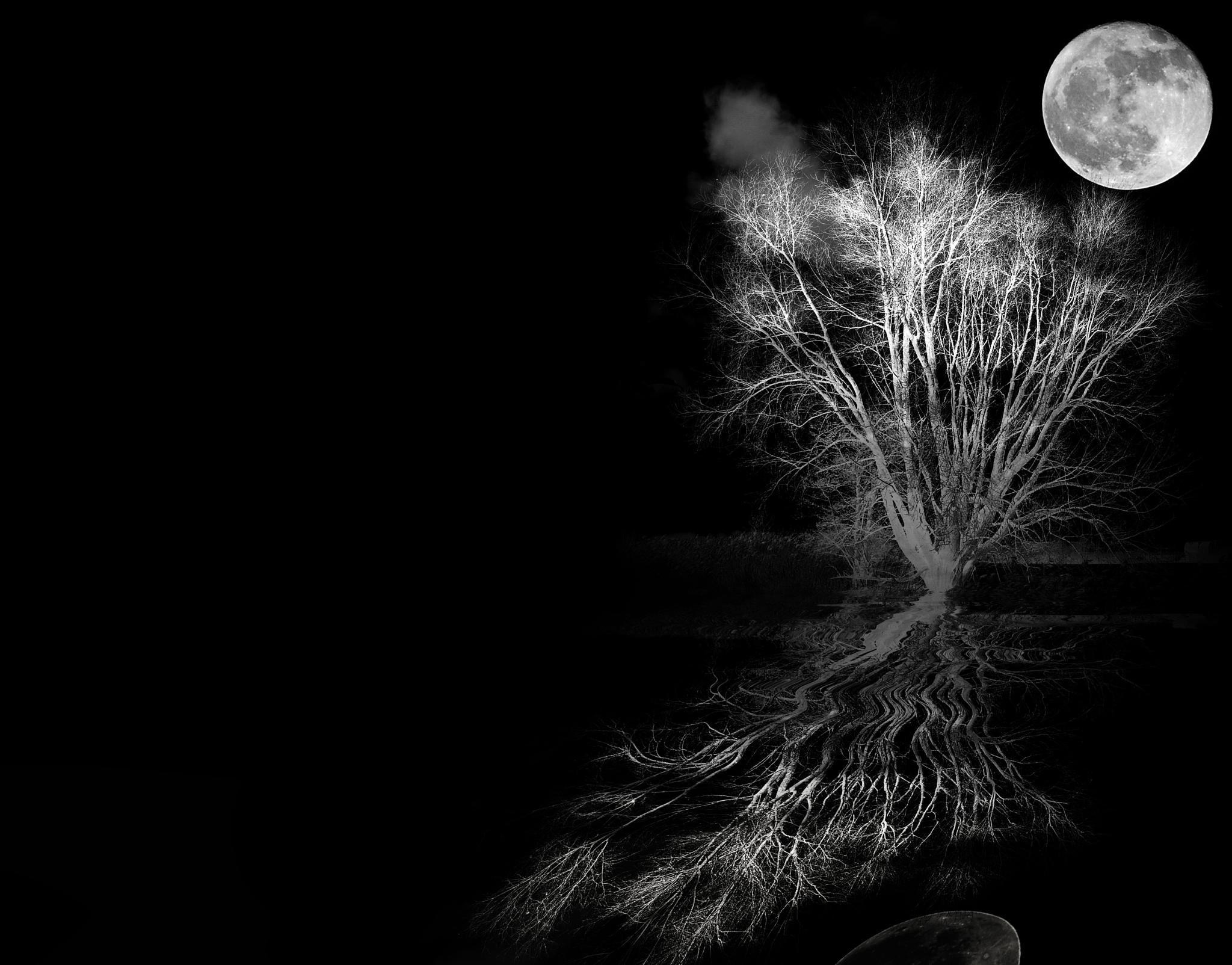 Night by Ad Spruijt