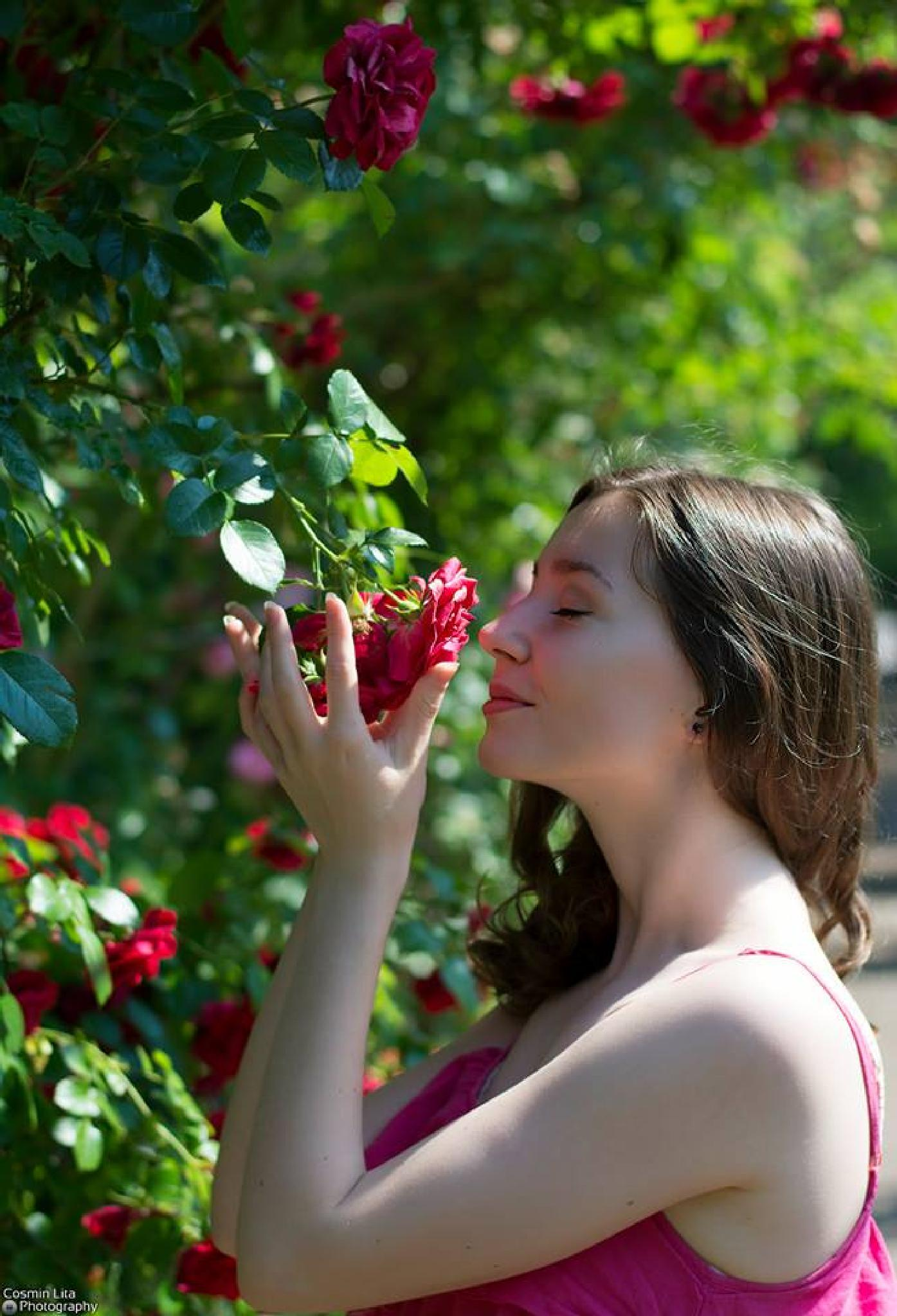Rose Red by Cosmin Lita
