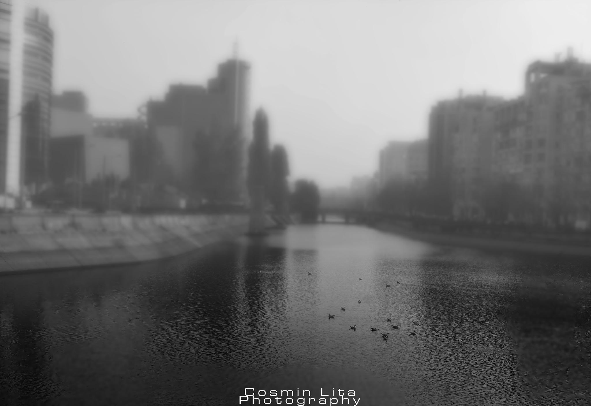 Foggy Bucharest by Cosmin Lita