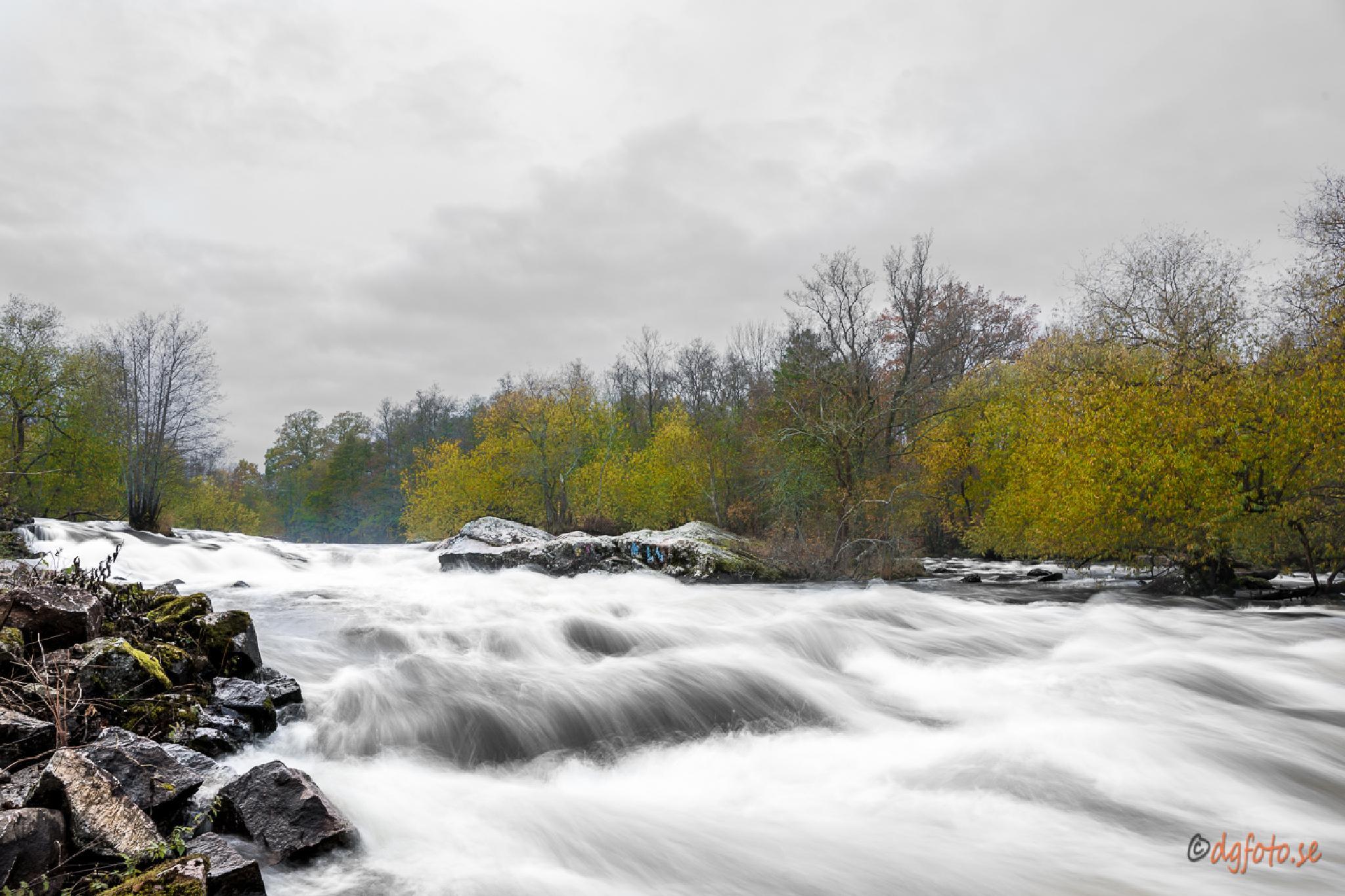 Autumn by Dennis Graversen