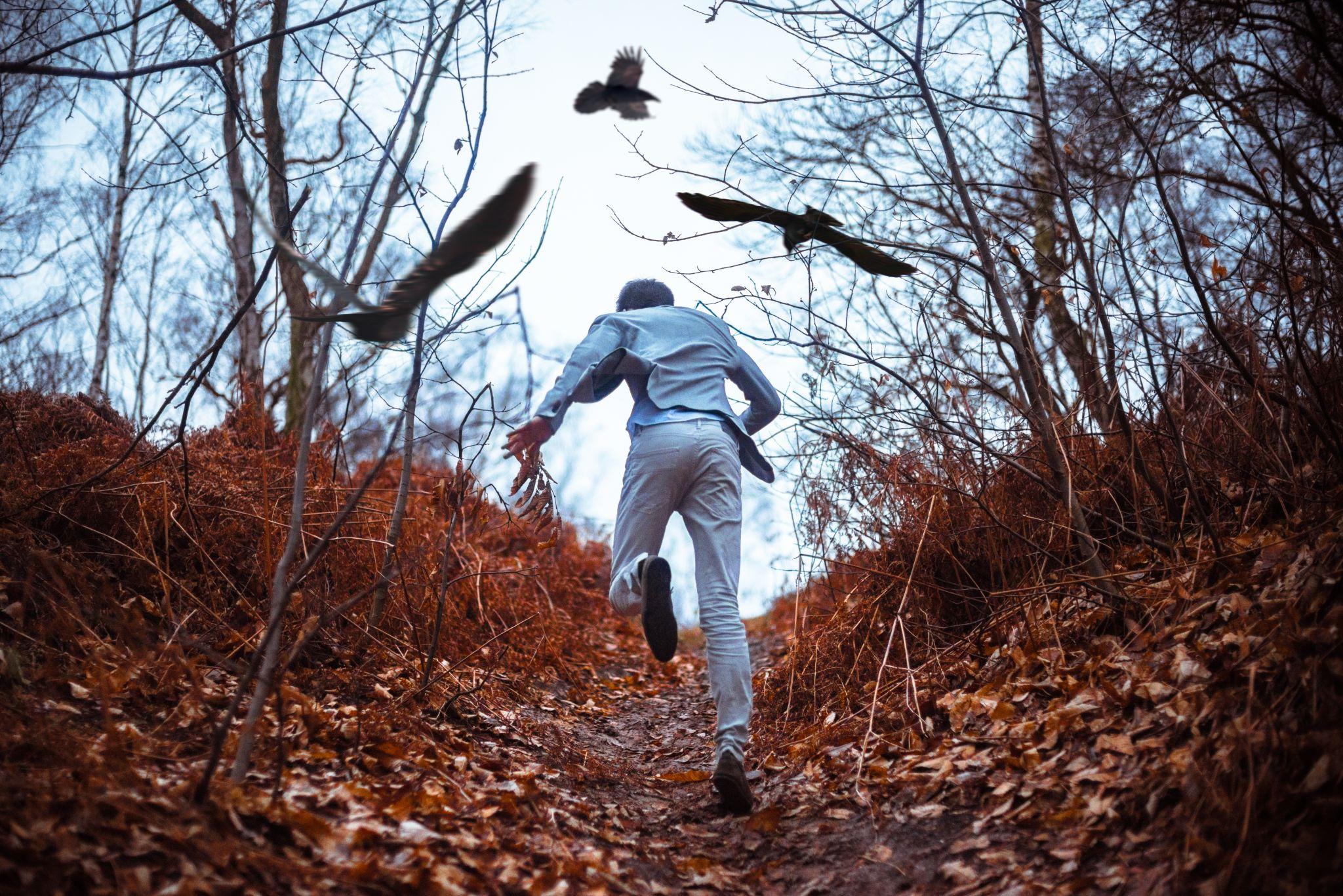 Escape by Clement Guegan