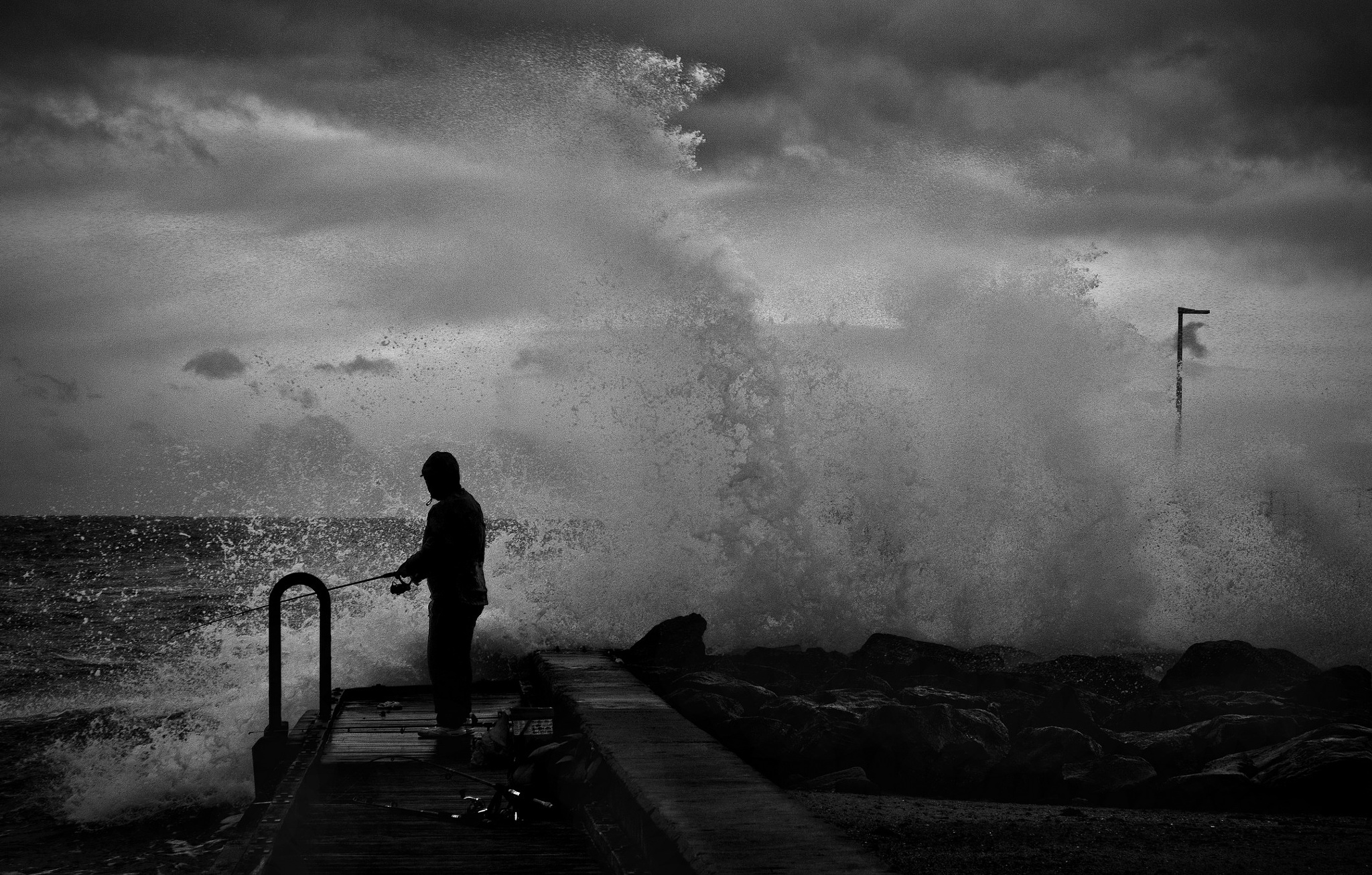 The Insane Fisherman by Mark Vivian
