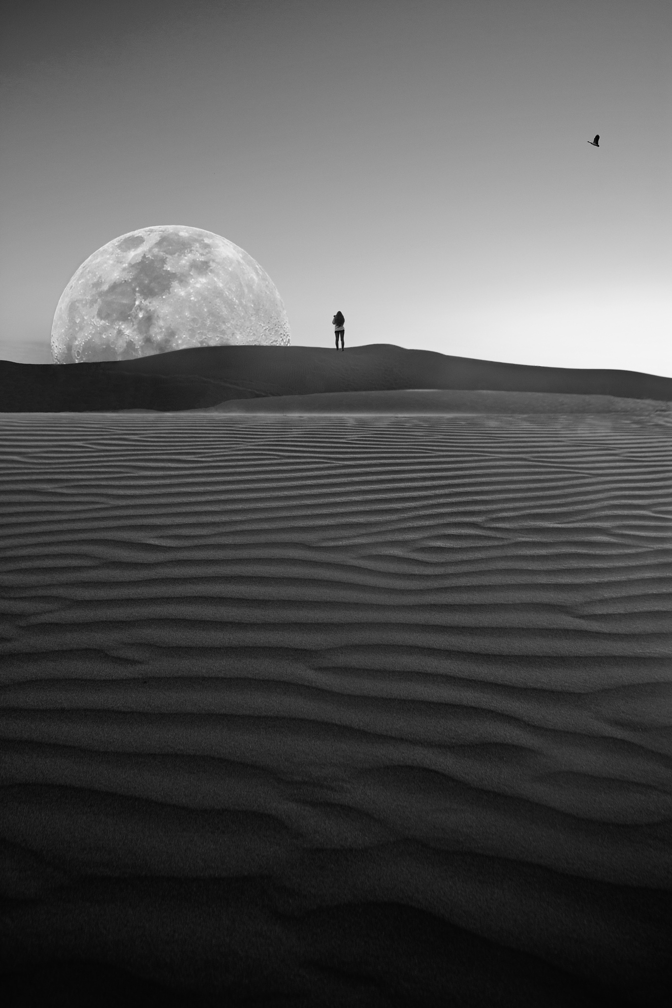 The Desert Moon Arises by Mark Vivian