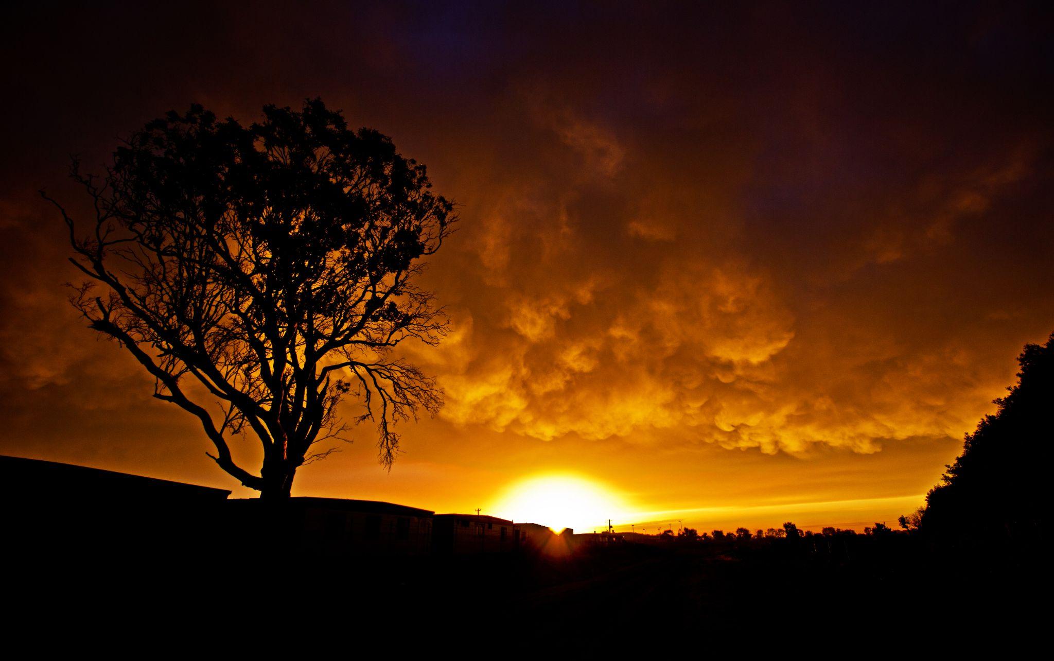 Golden Sunrise by Mark Vivian