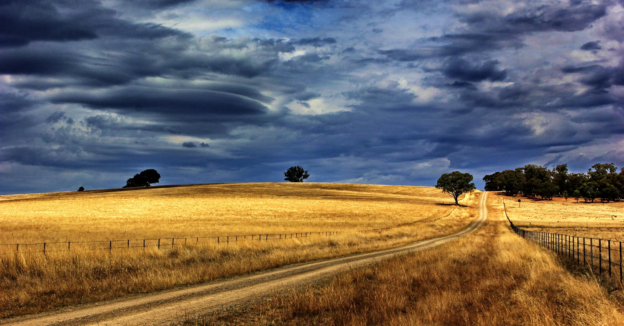 Country Road by Mark Vivian