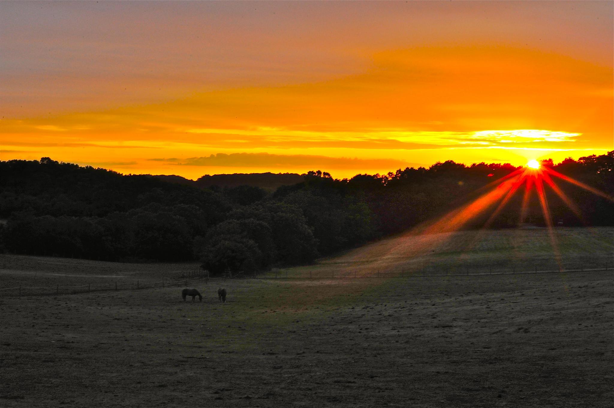 Sunset Rays by JeffViaPhotography